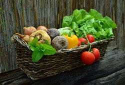 Система питания Чистая еда 2
