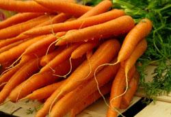 Рецепт салата из капусты 3
