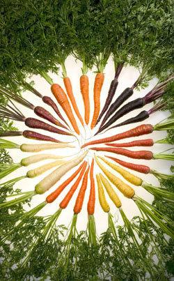 Вегетарианское питание. Веганство 1