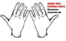 Завести вытянутые прямые руки за голову