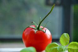 овощи, салаты, чаще всего, в сыром виде
