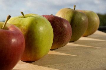 Диета на яблоках 1