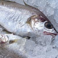 Основа диеты - рыба
