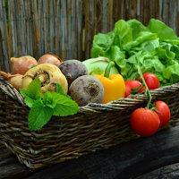 овощи 3