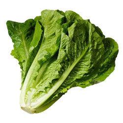 9. римский салат, романо