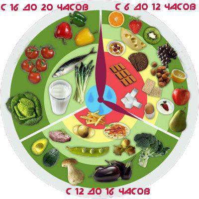 Каждую группу продуктов можно есть в определенное время дня