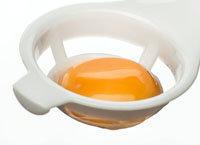яичные белки