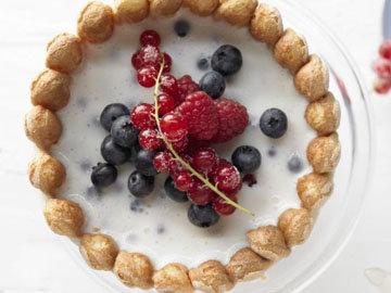Шарлотка с ягодами и творогом 1