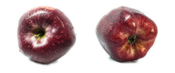 яблочное повидло без сахара
