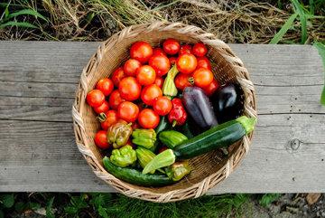 Ешьте овощи