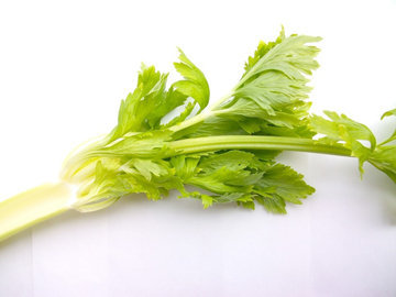 Сельдерей является широко известным диетическим продуктом