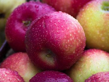 Польза яблок. Витамины