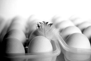 Яйца расценены многими экспертами по питанию как суперпродукт