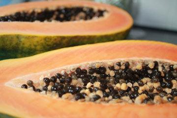 Папайя содержит ценные питательные вещества