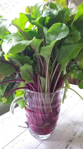 Добавляйте листья свеклы в салаты