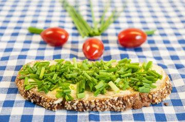 вегетарианские и веганские ингредиенты
