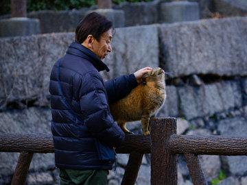 Остров Окинава в Японии