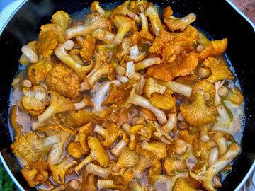 Сливочное грибное карри
