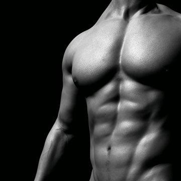 Наши мышцы защищают и поддерживают наше тело