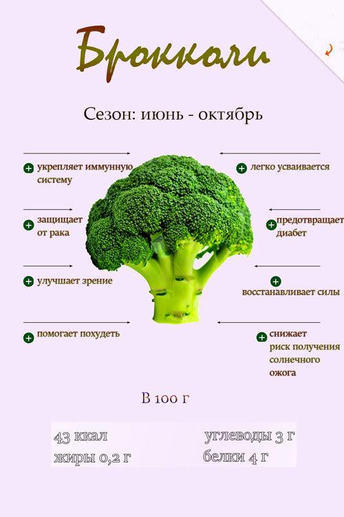 Почему надо есть больше брокколи