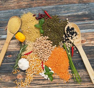 Растительный белок. Список продуктов