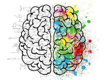 Интересные факты о нашем мозге