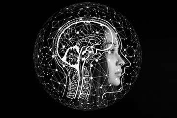 Питание для мозга и нервной системы. Продукты