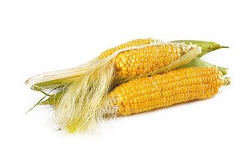 Кукуруза - овощ года