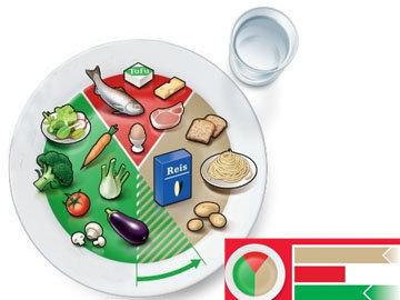 I. Модель оптимальной тарелки дл