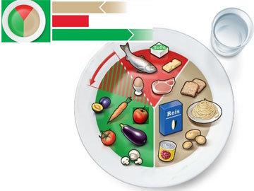 III. Модель тарелки для взрослых со сниженным аппетитом
