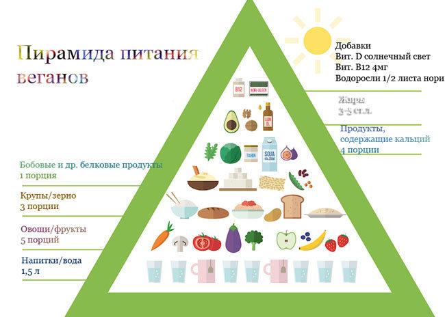 Веганская пищевая пирамида 1