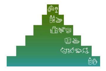 Веганская пищевая пирамида 2