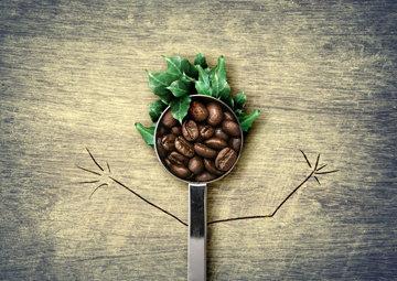 Кофе польза и вред для организма