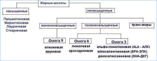 Различные категории жирных кислот