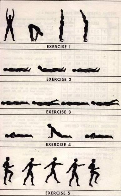 Ежедневная программа состоит из пяти упражнений для мужчин