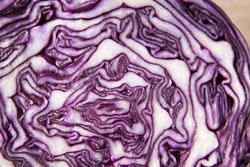 Рецепт салата из капусты 2