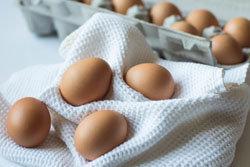 Свежесть яиц во многом зависит от условия их хранения