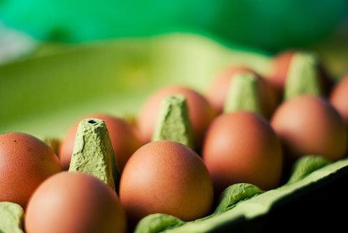 Яйца польза яиц - вред яиц