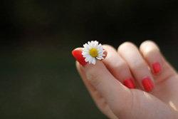 Рецепты красоты для рук и ног