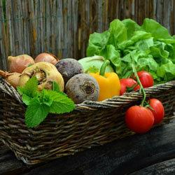 овощи и корнеплоды