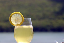 приготовим ферментированный домашний лимонад