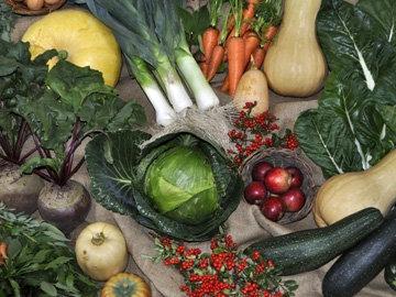 Источники растительного белка - овощи