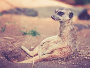 Релаксация, йога, медитация при запорах