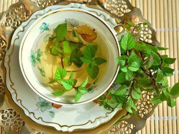 С перечной мятой легко подавить аппетит на сладости