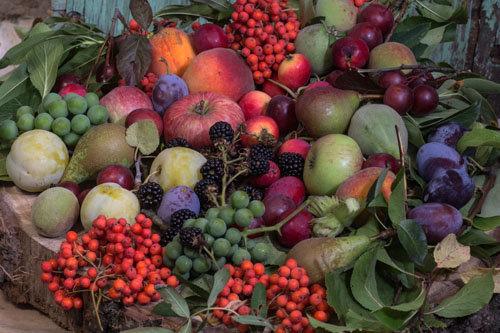 Праздник осени питание осенью