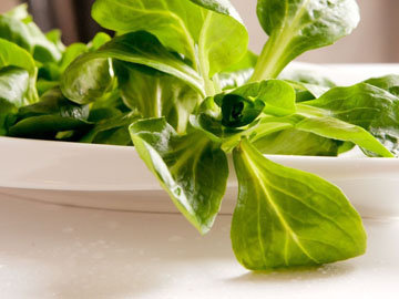Салат корн