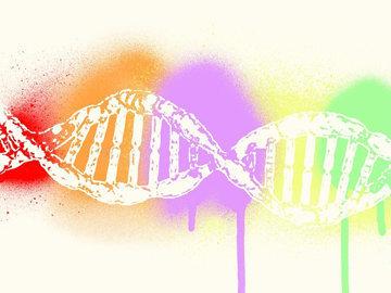 Генетика мешает терять лишний вес