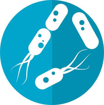 про- и пребиотики