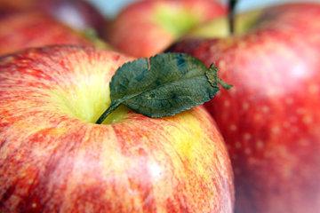 держите яблоко