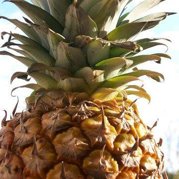 1. Сок из ананаса, лимона и льняного семени